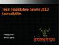 VideoVSTS2010TFSWorkItemsProcessTemplatesAndReportingExtensibility